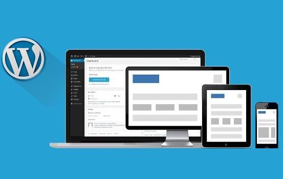 ¿Cuál es el mejor theme de WordPress para mi blog?